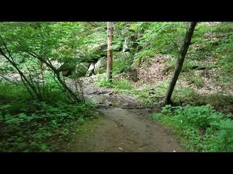 Hiking To Panther Falls