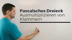 Pascalsches Dreieck zum Ausmultiplizieren von Klammern, wichtig für h-Methode, Lernvideo