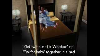 Repeat youtube video Sims 3 - What Woohoo looks like without bed! (Uncensored Woohoo)