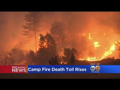 Death Toll Reaches 63 In Californias Camp Fire, While 631 Unaccounted For