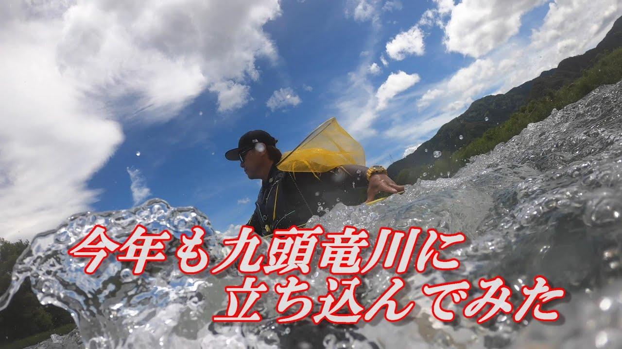 鮎釣り2021 今年も九頭竜川に立ち込んでみた