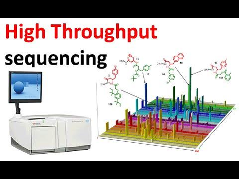 High throughput sequencing