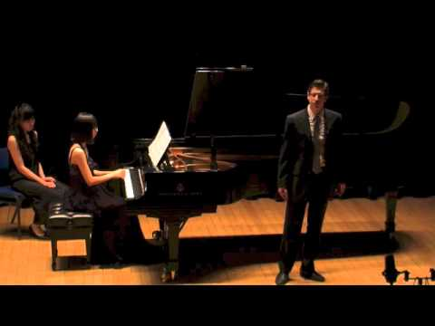 Vaughan Williams - Songs of Travel (Complete)