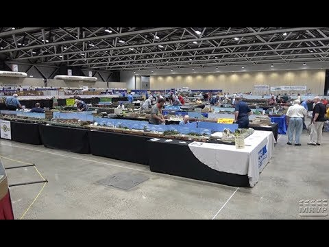 Record-breaking T-Trak layout at the National Train Show 2018