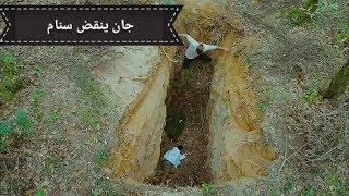 مسلسل الطائر المبكر الحلقة 19 مشهد جان ينقذ سنام مترجم للعربية