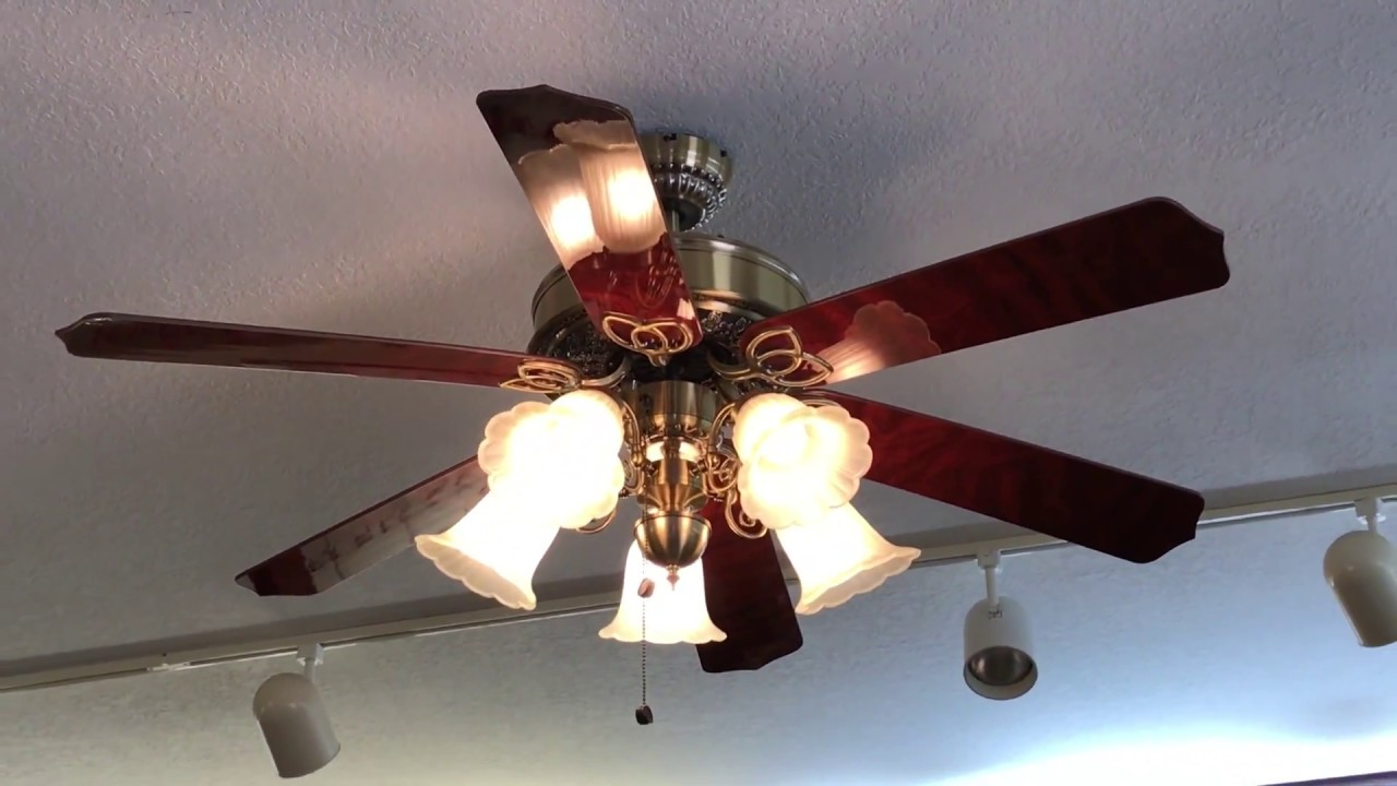 3 Harbor Breeze New Orleans Ceiling Fans At An Eye Doctor Office