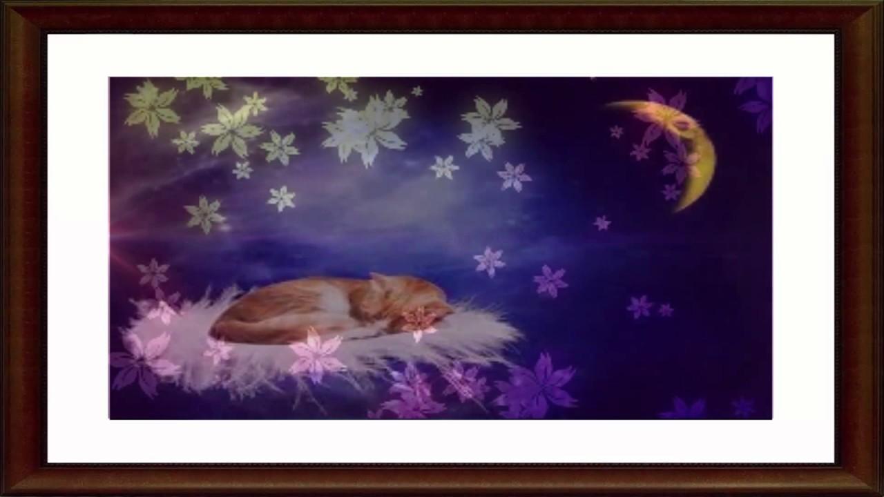 Comptine Pour Dormir Bébé Chanson Pour Faire Dormir Bébé