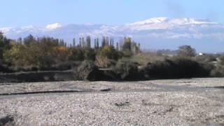 Qafqaz sıra dagları