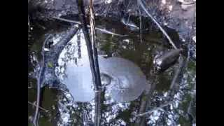 Нефтяной источник(Окрестности г. Ухта. В лесу много нефтяных луж. Это одна из них., 2013-08-31T08:26:09.000Z)