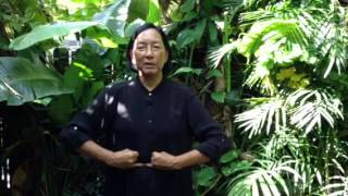 FIVE ORGANS QIGONG Mudras & Healing Sounds