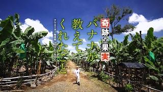 奇跡の果実バナナが教えてくれたこと クリエーター和田率フィリピンを行く 和田明日香 検索動画 25