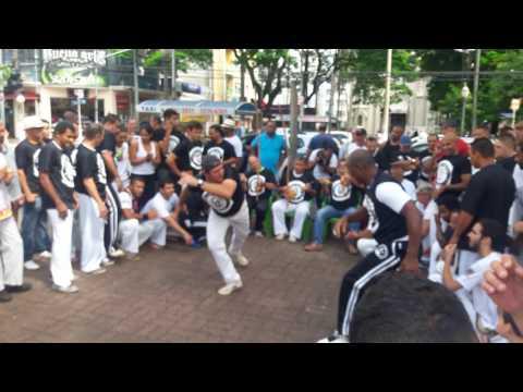 Capoeira sbo