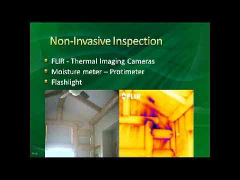 Guide to mold inspection environmental solutions association