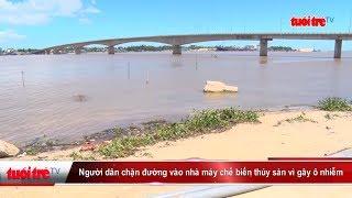 Người dân chặn đường vào nhà mày chế biến thủy sản vì gây ô nhiễm | Truyền Hình - Báo Tuổi Trẻ