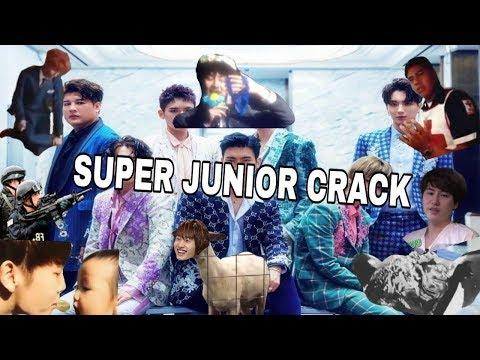 Crack SUPER JUNIOR [ESPAÑOL]