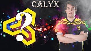BUZ ADAM! BEST OF CALYX