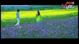 Maa Music - DON SONGS - NEEKAI NENU (Starring NAGARJUNA, ANUSHKA)