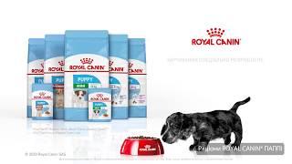 Здоровий початок життя з ROYAL CANIN® PUPPY atg 15