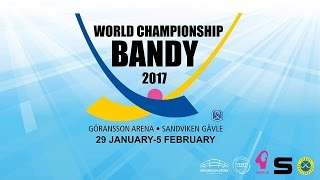 World Championship Bandy 2017 (Russia - Sweden)