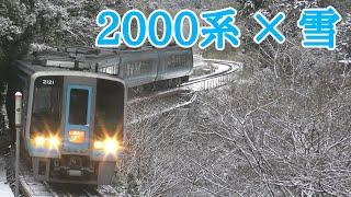【撮影記録】雪景色の土讃線を駆け抜けるJR四国2000系南風『SatoJRhoku475の鉄道記録』Vol.32 #210111