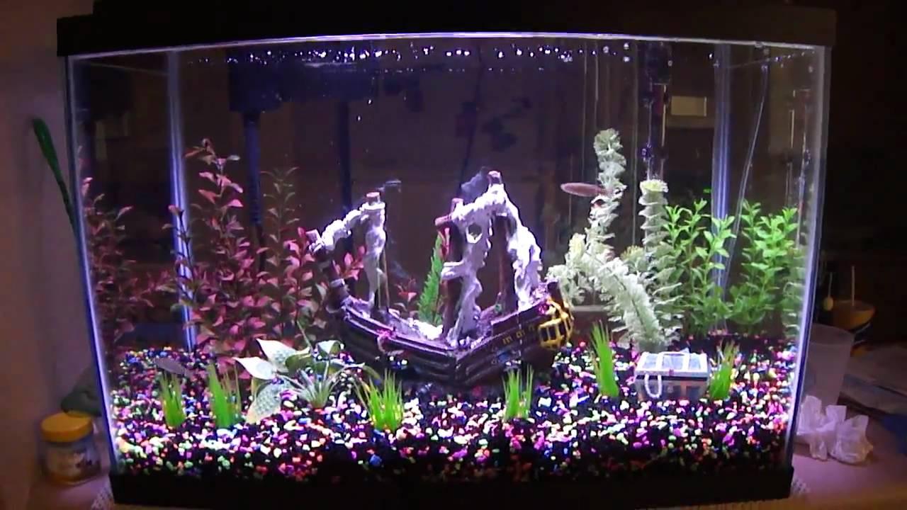 Image result for treasure chest aquarium decoration