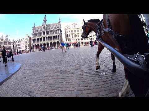 Carriage Tour Brussels