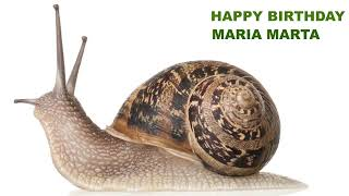 MariaMarta   Animals & Animales - Happy Birthday