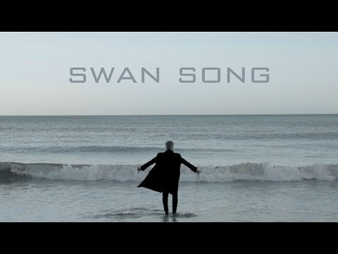 THE MISSION  Swan Song