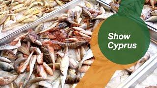 Рыба на Кипре