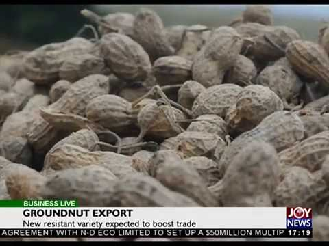 Groundnut Export - Business Live on JoyNews (25-9-17)