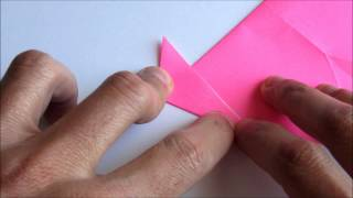 Origami Reverse Folds