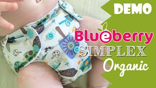 Blueberry Organic Simplex Cloth Diaper Review / Demo #ClothDiapers