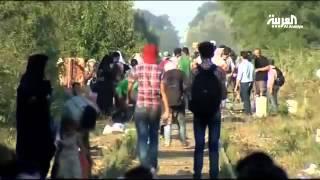 معاناة كبيرة للمهاجرين على الحدود الصربية المجرية