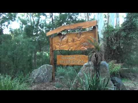 Oz Fish TV - Upper Yarra Blackfish (Part 1)