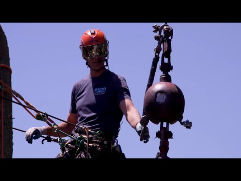 Pro Tips: Crane Use During Hazardous Jobs