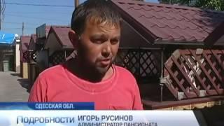 видео крым отдых 2015 для украинцев