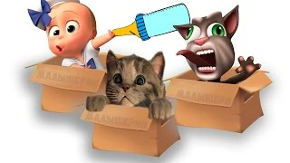 Мой котик Крошка босс БЭБИ и МОЙ маленький котенок мультик для детей little kitten baby boss