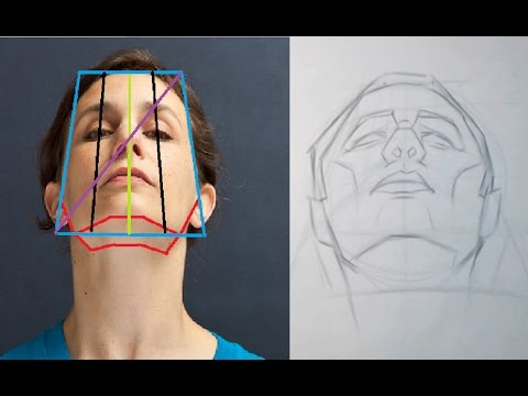 head-proportions-part-4---extreme-angles-and-perspective