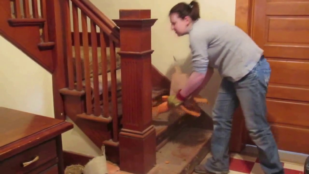Removing Stair Carpet Removing Carpet From The Stairs Youtube