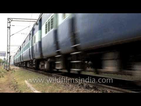 Train on tracks!