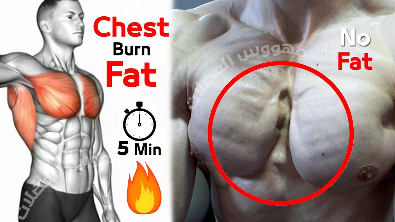 HIIT Cardio Workout 🔥 Chest Burn Fat 🔥 Bodyweight No Equipment at Home