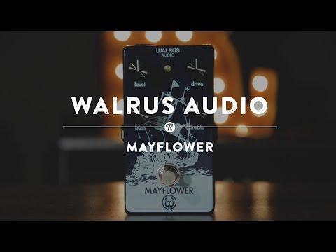 Walrus Audio Mayflower | Reverb Demo Video