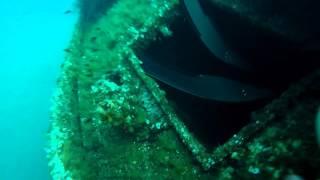 Tuffo nel relitto dell'Elviscot a Pomonte - Isola d'Elba 2015