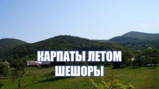 Шешоры отдых в Карпатах летом
