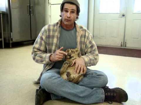 Lion Cub Rescue w/ Billy McNamara