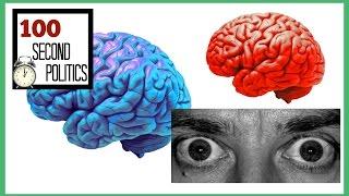 Liberal vs. Conservative Brain Explained [100 Seconds]