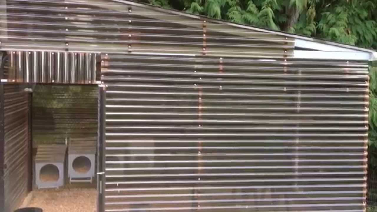 Dog Kennel Converted Into A Chicken Coop Youtube
