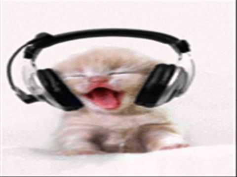 Dugem - Kokok Ayam - By' Cat' Funk Versiaon - RemiX House Musi