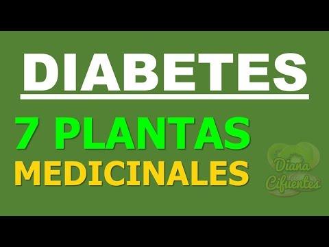 7 Plantas Medicinales Para La Diabetes: Hierbas Para La Diabetes