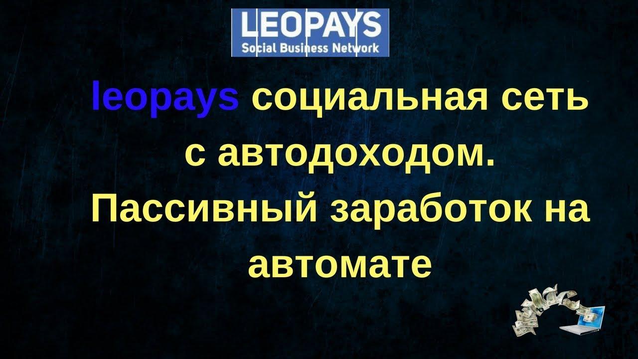 Заработок Сети на Автомате   Leopays социальная сеть с автодоходом Пассивный